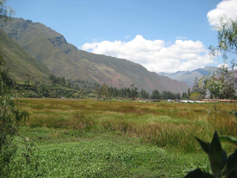Vista a la laguna de Huachac; especial para Bird watching