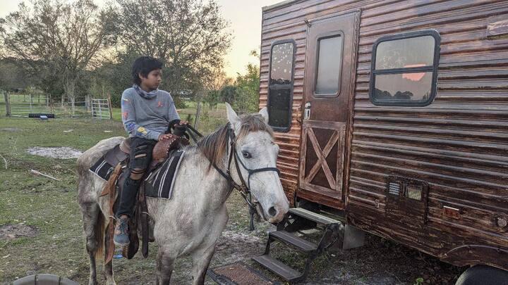 FREE Horseback Riding and Farm Animals