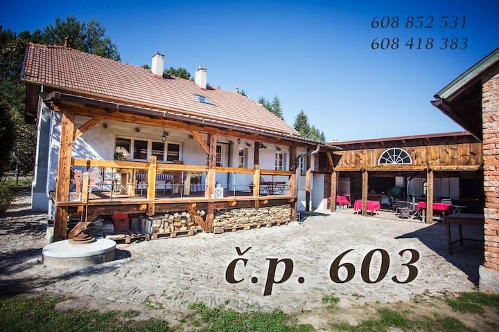 Villa 603 - Příbor - Hus