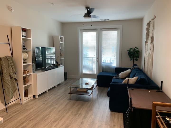 DT Tampa Apartment
