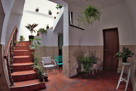 CASA LUNA en Chapultepec Excelente zona centrica
