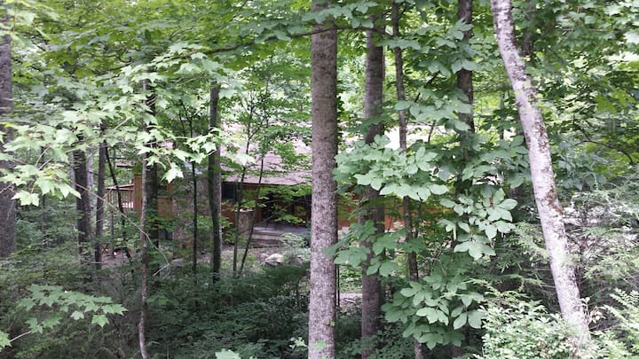 Dave & Barb's Place - Private ~ Quiet ~ Secluded