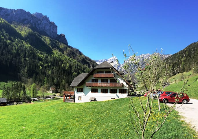 Beautiful private room for 4 near Logarska valley