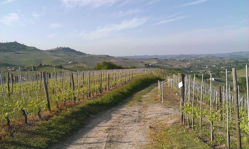 Romantico bilocale tra le vigne - Barolo - Apartemen