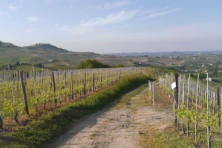 Romantico bilocale tra le vigne - Barolo - Lejlighed