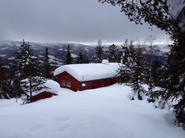 Cozy, off-grid cabin with a spectacular view - Eggedal - Blockhütte