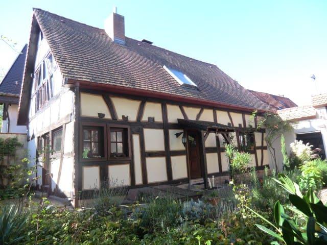 Gästehaus Sicurum Himmelblau - Dannstadt-Schauernheim - Casa
