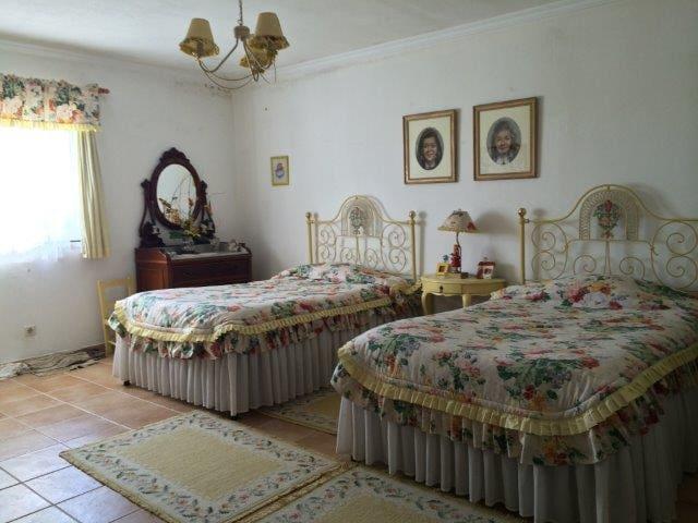 FERNÃO PIRES - quarto amarelo:yellow room