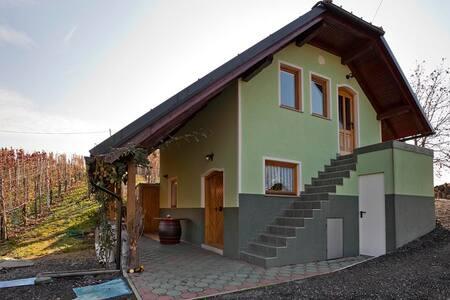Vineyard cottage Goršin - Križe