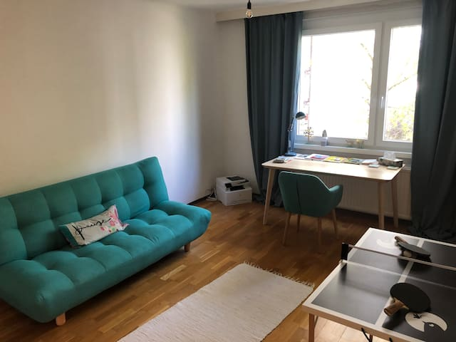 Cosy flat close to Mödling center