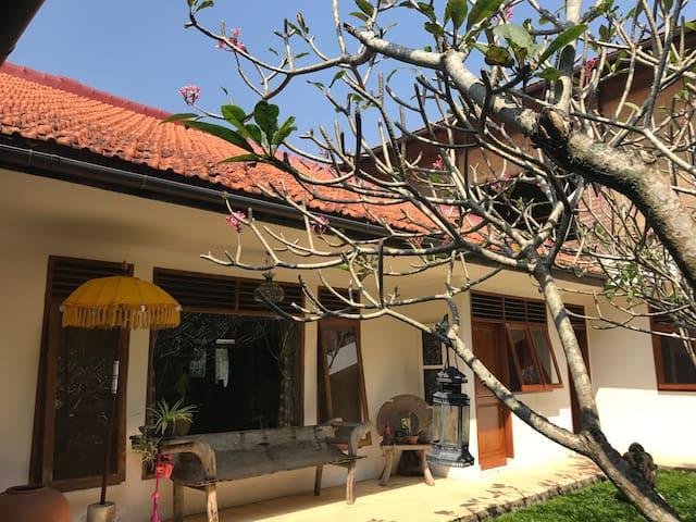 Yoga and Vipassanā in Bogor City. Free Breakfast!