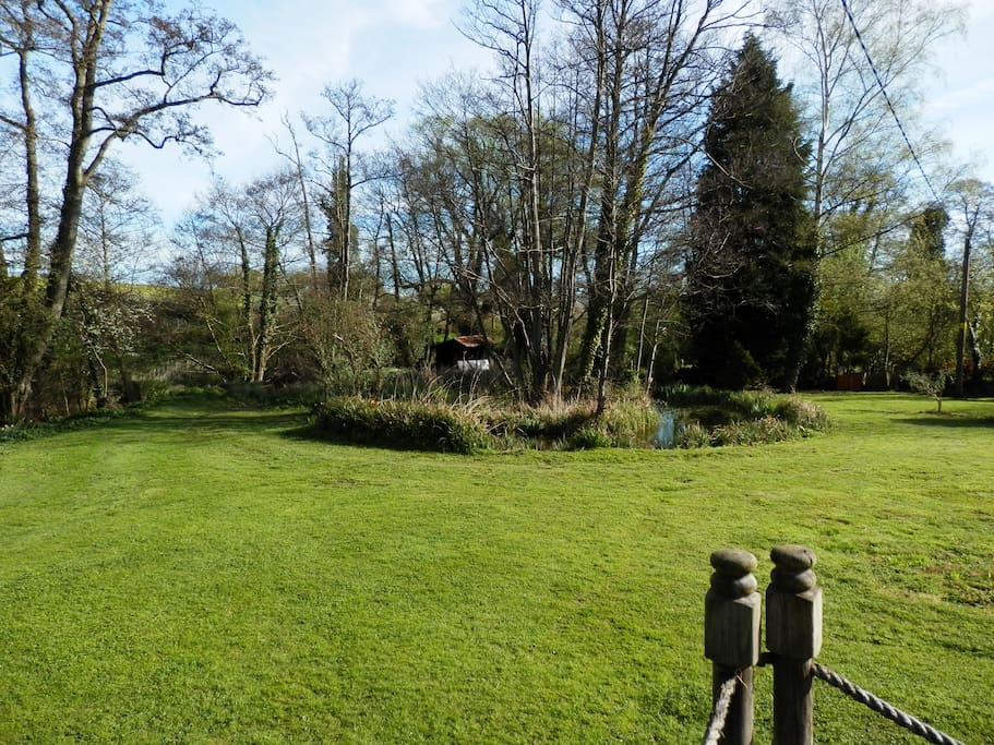 The garden pond  looking north west from the sitting room deck