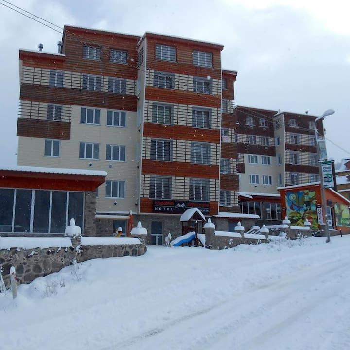 Bakuriani Apartment near Didveli