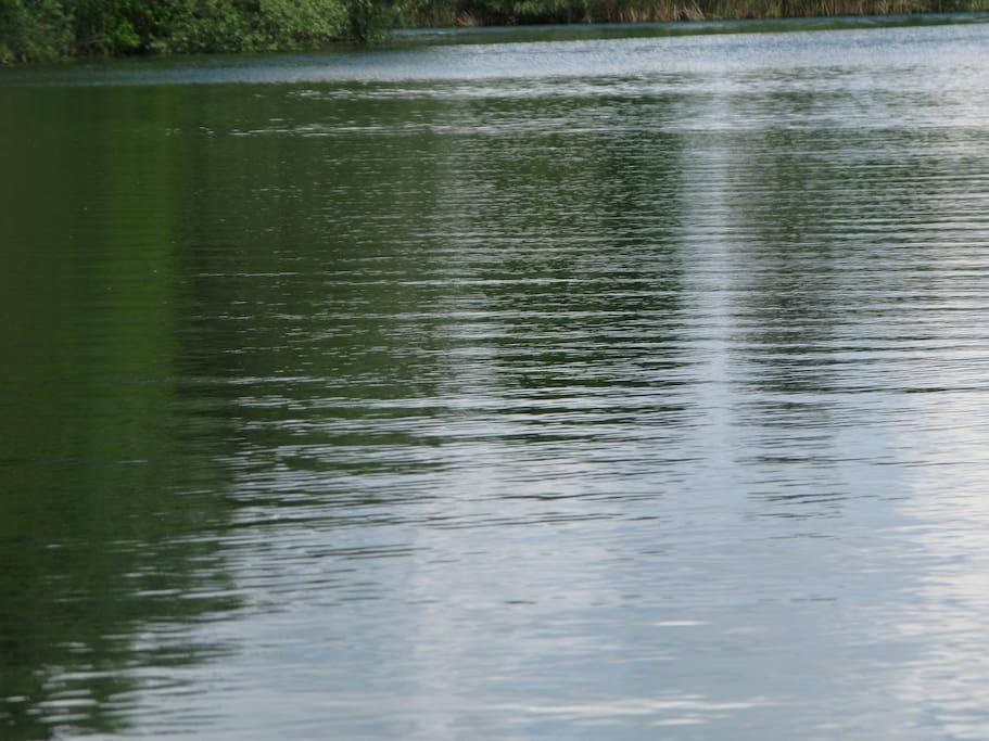 Silbersee=glasklarer Badesee in 12 Minuten mit dem (verleiharen) Fahrrad erreichbar