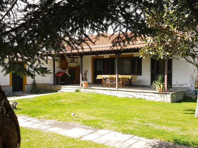 Yiayias Rinas Lovely Cottage House for Agrotourism