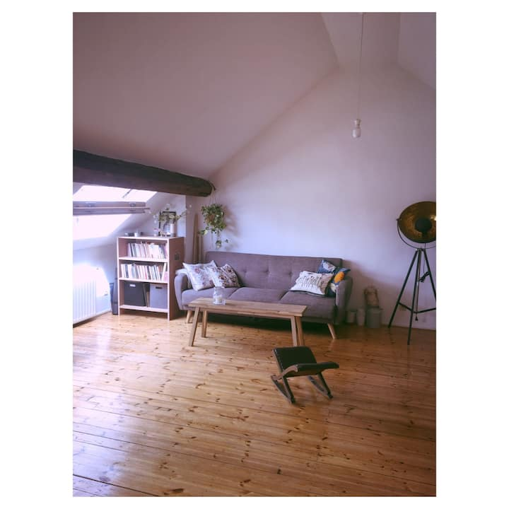 Wonderful cosy loft in the middle of Ixelles