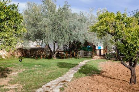 Casa para al quilar el jazmin - L'Alcora - Talo