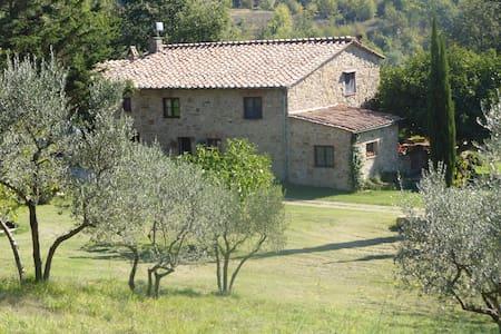 Casale nella campagna Toscana - Castelnuovo di Val di Cecina - Haus