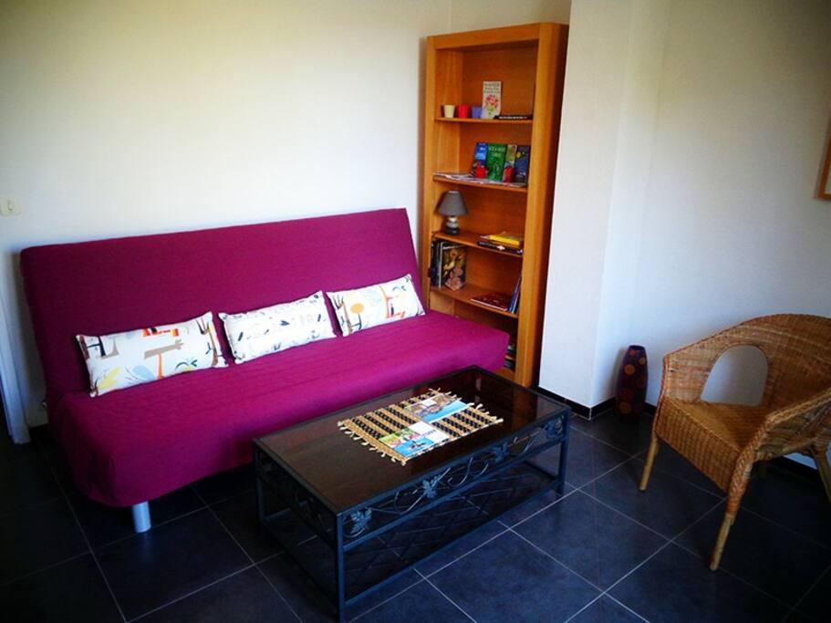 Le salon / chambre avec le canapé-lit convertible 200x140