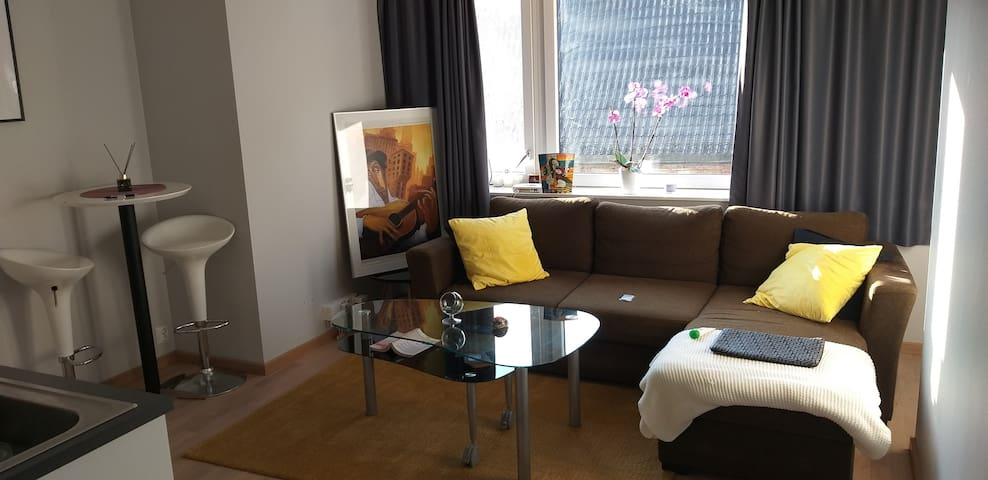 APARTMENT IN THE CITY CENTER OF OSLO