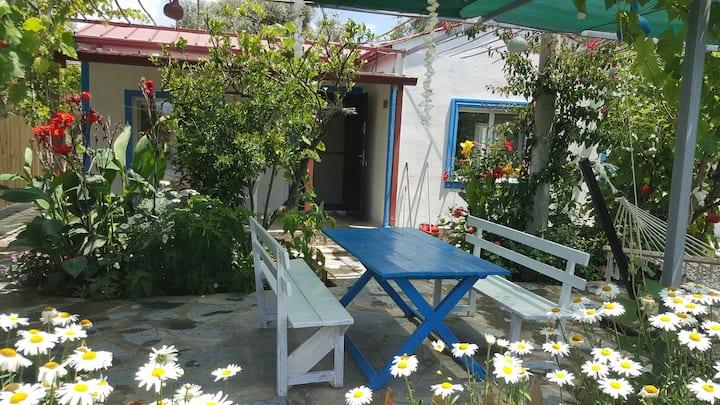 Deniz Kenarında Aileye Bahçeli Ev (Papatya Apart)