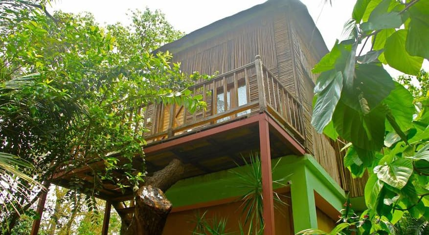 The Tree House - Boutique BnB in Anjuna