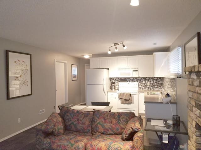 Newly renovated Large 1 Bedroom Basement Suite