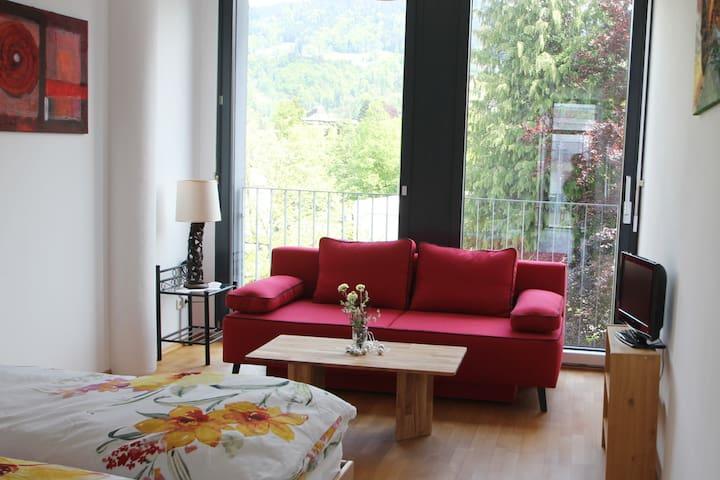 In the heart of Dornbirn - new, comfortable & calm