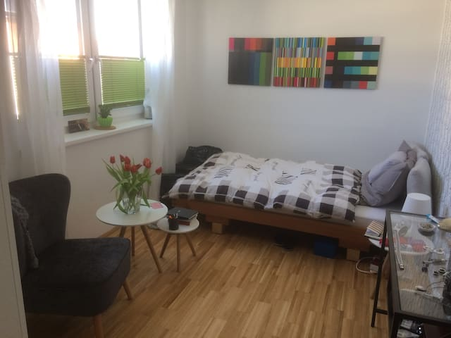 Nettes Zimmer in moderner Privatwohnung - Wels - Apartment