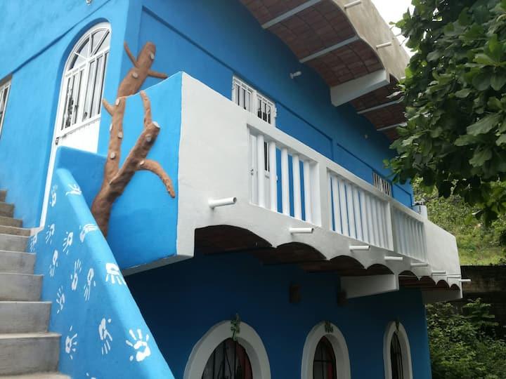 Casita iguana 2