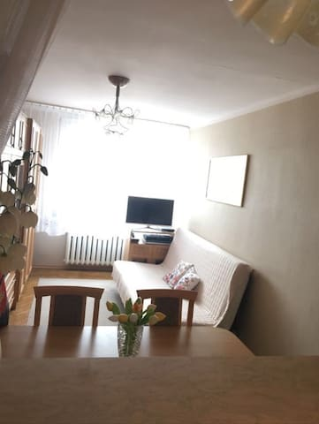 ENTIRE APARTMENT CLOSE TO THE CITY CENTER - Kielce - Daire