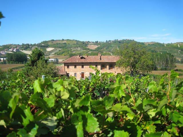 La Vernetta - Wine & Cellar House