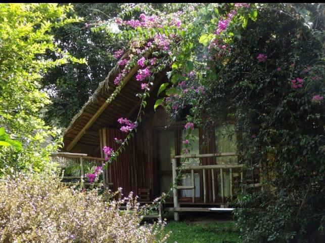 Oveng Lodge Camp Restaurant Bar
