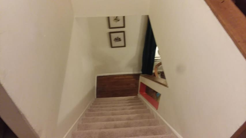2 story loft apt. One bedroom. Cleveland/Tremont