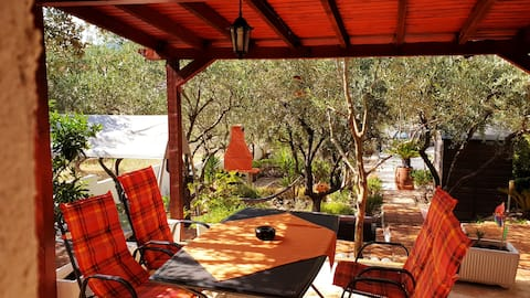 House Oliva 2/2 with private pool and large garden
