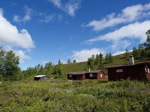 Besuchen Sie einen angenehmen Sitz in Gudbrandsdalen / Otta