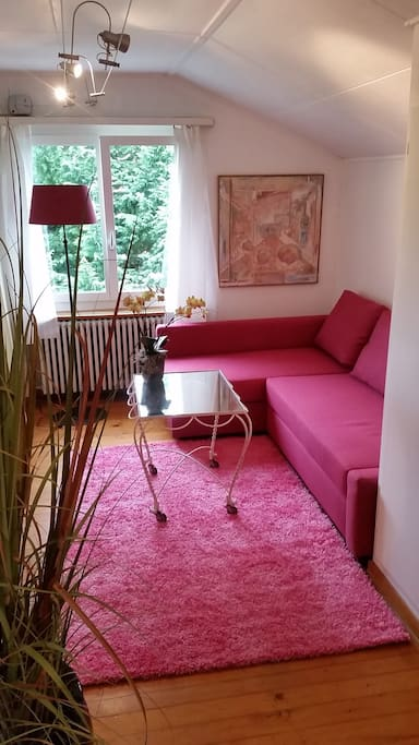 Couch 2nd Room