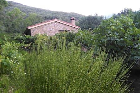 Finca rural (naturaleza y silencio) - Losar de la Vera - Chalet