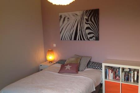 Chambre 16 m2 confort, 15 minutes de Genève - Grilly