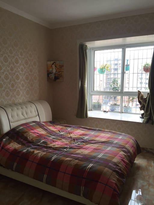 乳胶床垫,遮光窗帘