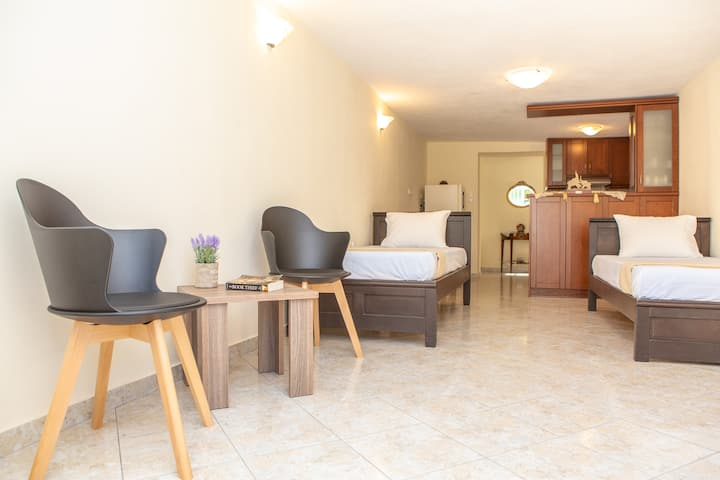 Naxos Premium Apartment