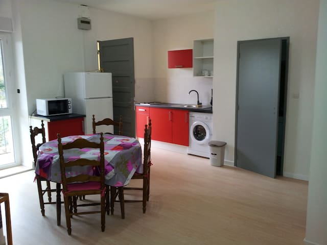 T3 + BALCON  en face des Thermes - Amélie-les-Bains-Palalda - Appartamento