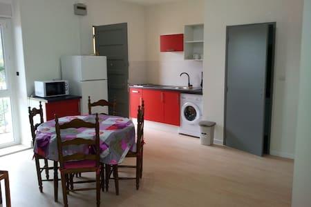 T3 + BALCON  en face des Thermes - Amélie-les-Bains-Palalda - 公寓