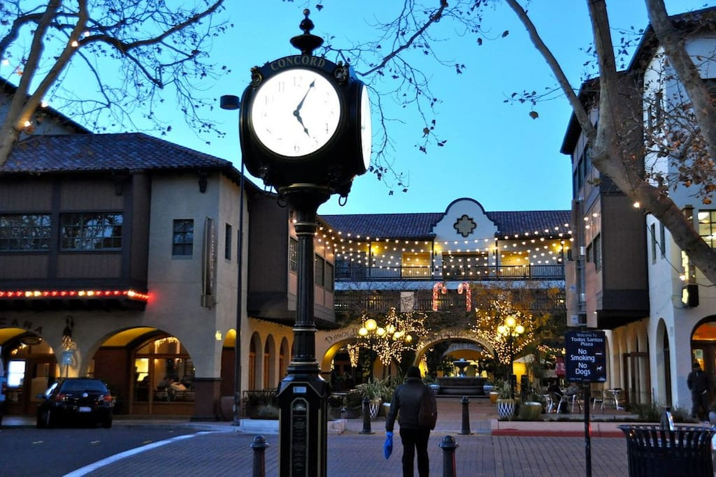 The gorgeous Todos Santos Plaza and bustling downtown is just one block away and BART is only 5 blocks