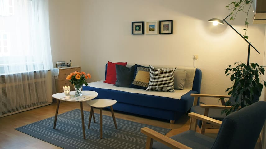 A couch in our living room - 5 Minutes to Wasen - Stuttgart - Leilighet
