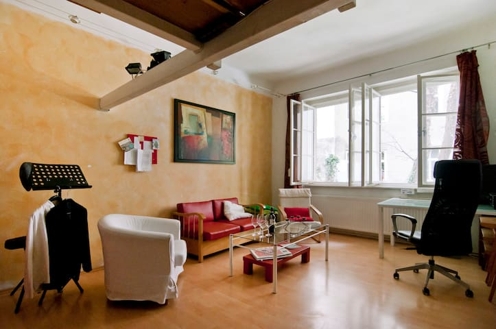 Musician's apartment in the heart of Vienna