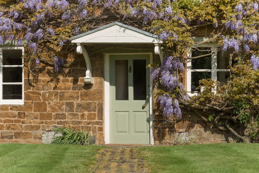 Front door with wisteria in bloom