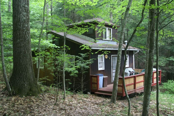 Secluded Cabin the Catskills Woods - Wurtsboro - กระท่อม