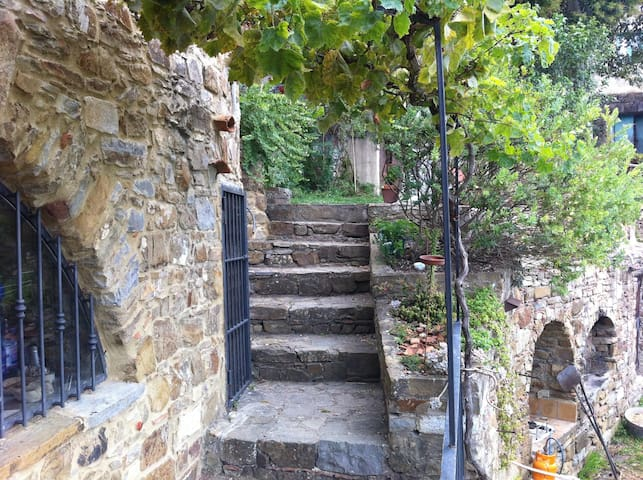 Old farmhouse in the mountains, sea and nature - Fornelli - Apartament