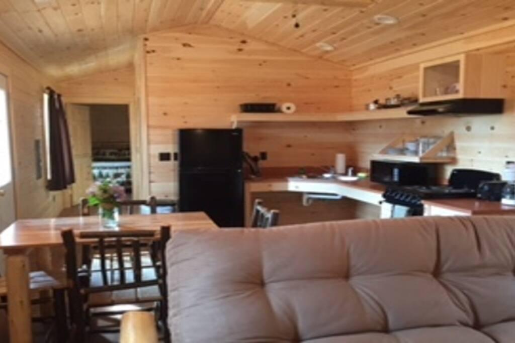 Living Room w/ Queen futon